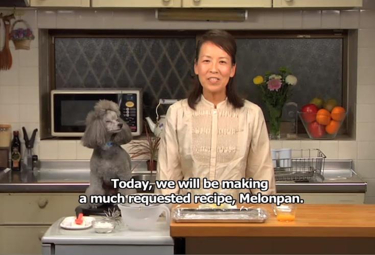 Image: cookingwithdog/YouTube