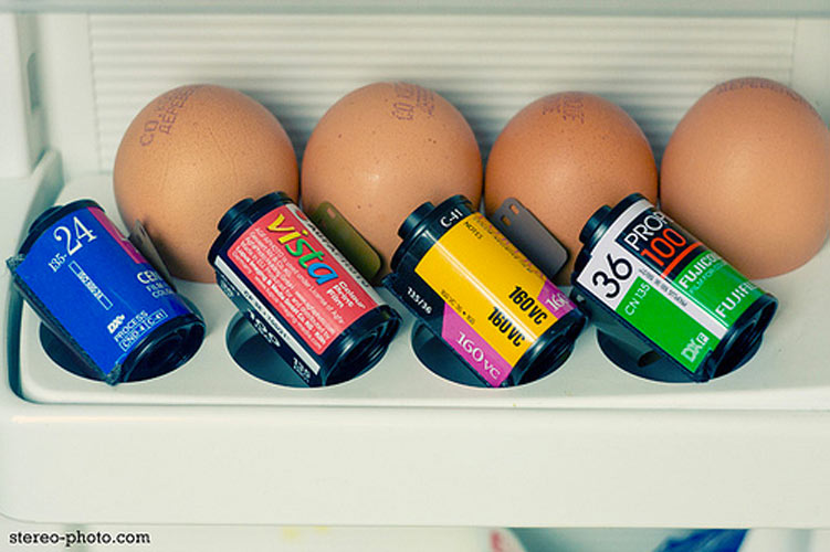 This is how you keep film properly, next to the eggs.