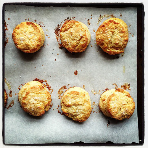 Here are some crave-able biscuits from