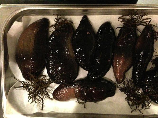 Sea cucumbers.