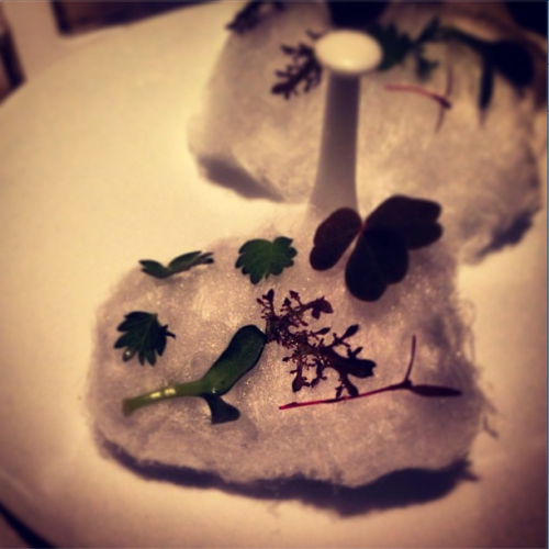 Herb sea salt cotton candy amuse from Corton in Tribeca.