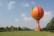 The Peachoid, the world's largest peach-shaped water tower, can be seen along I-85 in South Carolina. (Source)