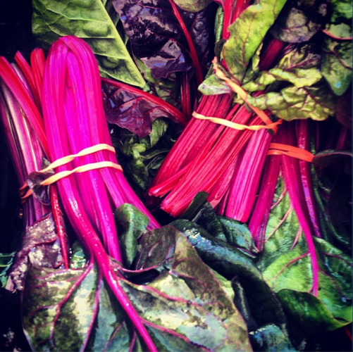 This fluorescent pink chard probably glows in the dark.