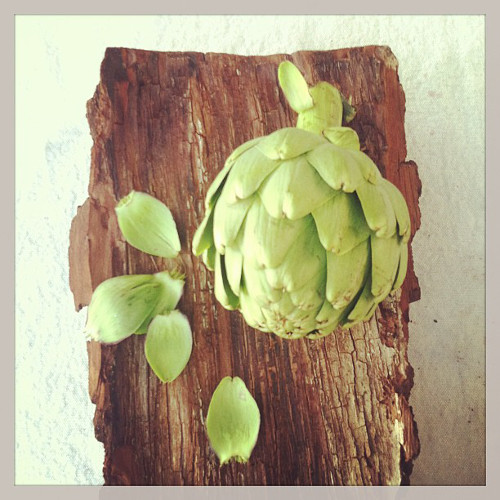 What is this artichoke doing? Why does it look so good? (Photo: @theforestfeast)