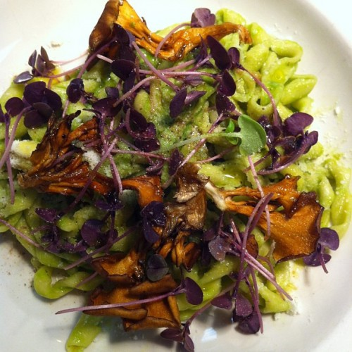 @frankcastronovo lets us peep a ramp salsa Busa pasta with pickled ramp and maitake mushrooms.