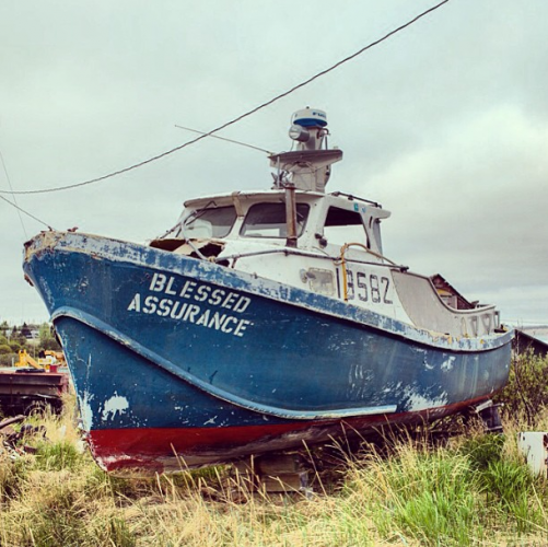 """""""Better get some blessed life insurance #deathtrap #blessedinsurance #fishermansfund"""""""