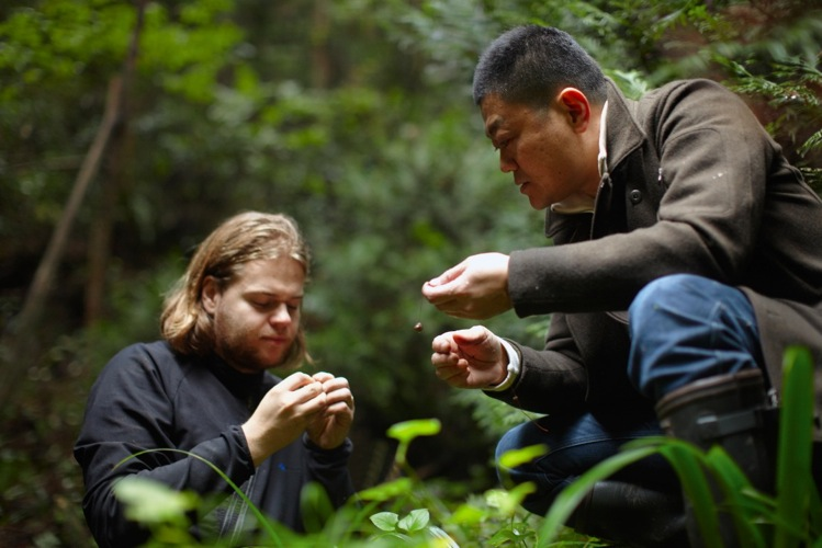 """Magnus Nilsson and Yoshihiro Narisawa identify their finds while foraging at Cook it Raw Ishikawa Prefecture, Japan 2011"""