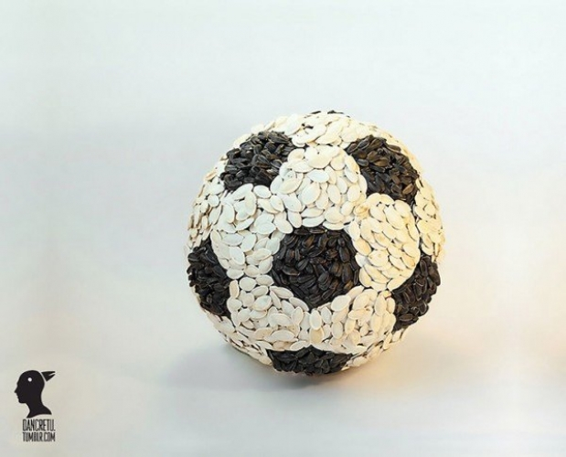 sunflower seed soccer balljpeg