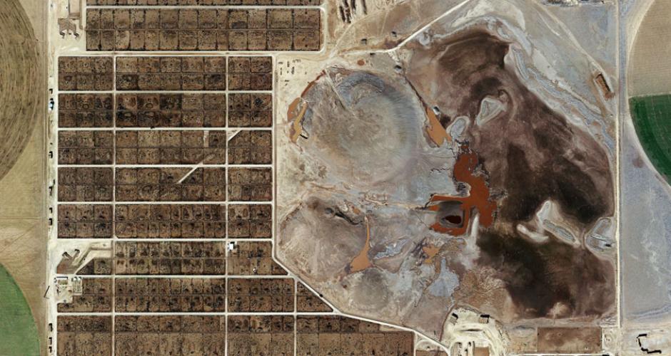Randall County Feedyard, Amarillo, Texas (Photo: Mishka Henner)