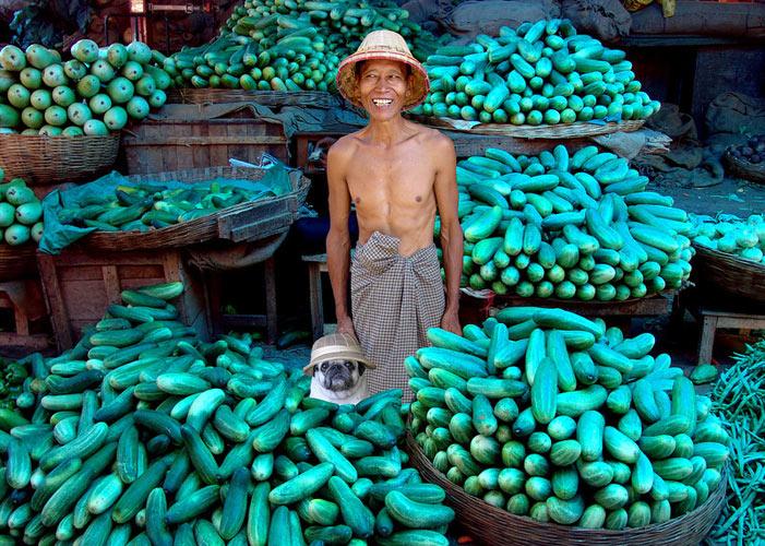 Cucumber merchants. Mandalay, Burma (Photo: