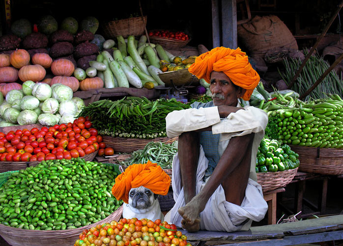 Green Grocers. Rajasthan, India (Photo: