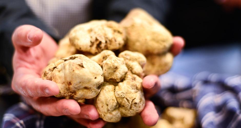truffles_8