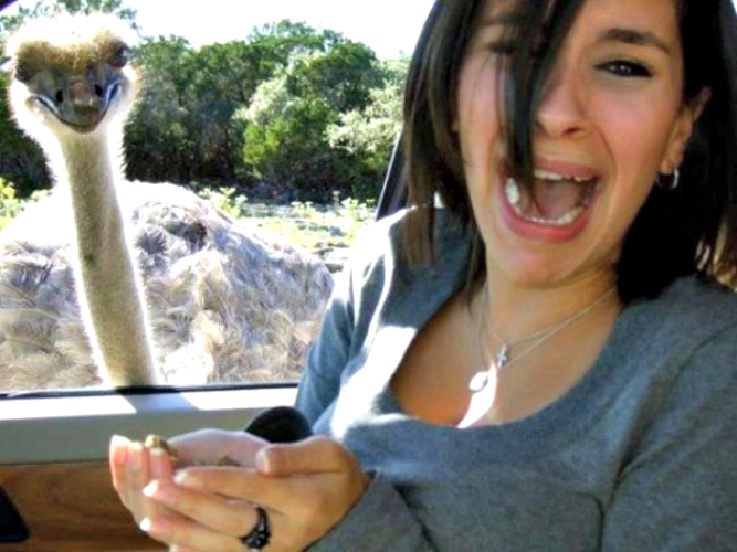 We sympathize with this woman, because, really, who knows what an emu is capable of? (Photo: This is Photobomb)