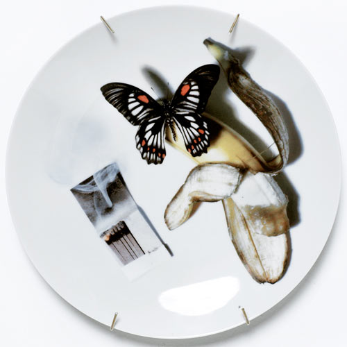 Untitled (Butterfly and Banana)