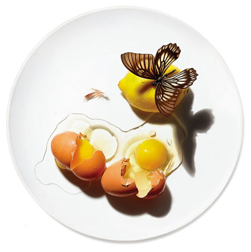 """""""Untitled (Butterfly and Two Eggs)"""""""