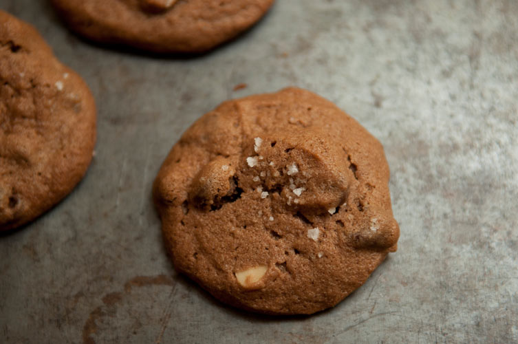 Salted Double Chocolate Peanut Butter Cookies. This is the ultimate peanut butter cookie for chocolate lovers. The texture is reminiscent of the peanut butter cookie we all grew up on but with every detail refined—the base is made with cocoa, you stir in unsalted peanuts and semi-sweet chocolate chips (just the right amount of each so it's not overkill), and then sprinkle coarse sea salt on top.