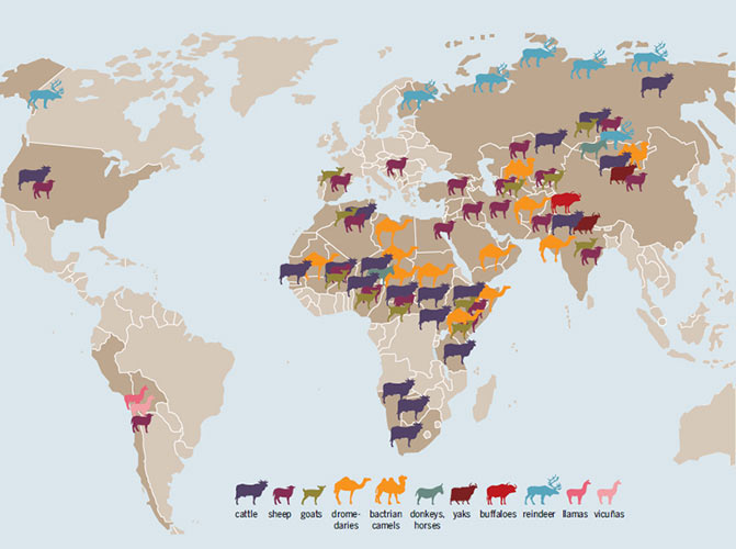 Animal husbandry, by countries and main species. (Photo:
