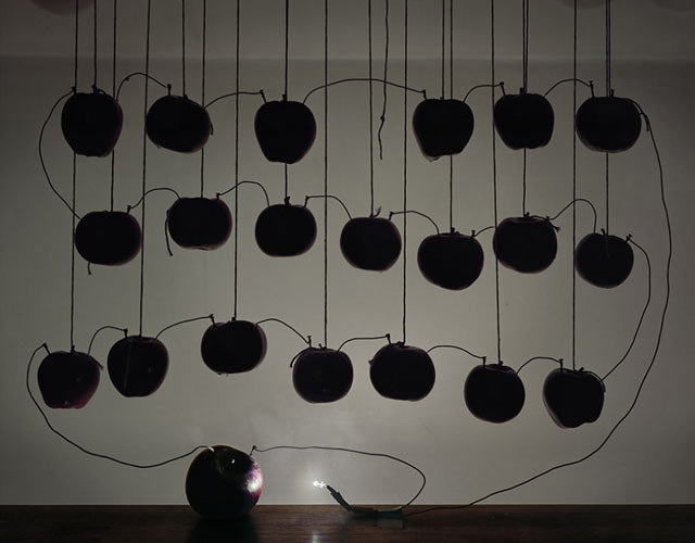 Battery with Hanging Apples 2013