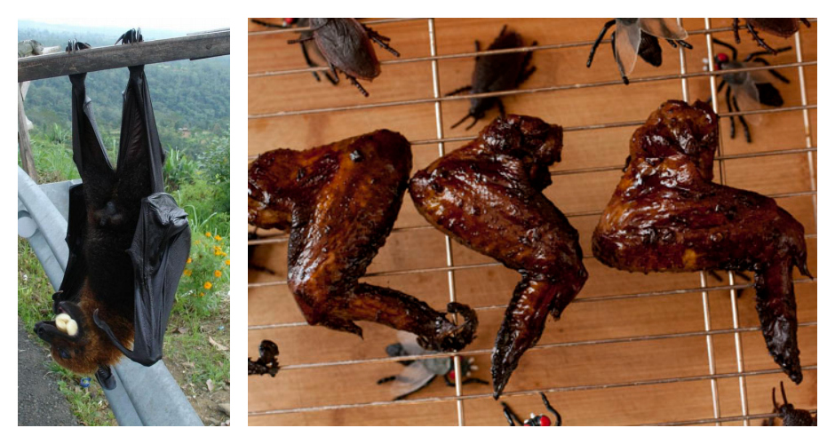BATSCulinary uses: Bats are often roasted and sold as street food, or cooked in soup.Commonly used in: Filipino, Thai, and Chinese cuisine(Photos: Asian Town Blog, Macheesmo)