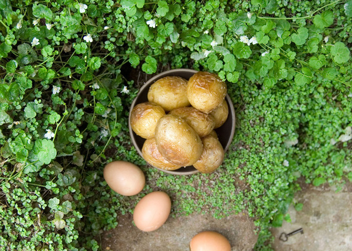 """The Secret Garden by Frances Hodgson Burnett, 1910-1911. """"Roasted eggs were a previously unknown luxury and very hot potatoes with salt and fresh butter in them were fit for a woodland king—besides being deliciously satisfying."""""""