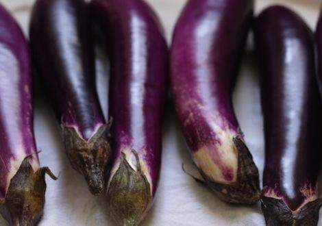 admony_eggplant