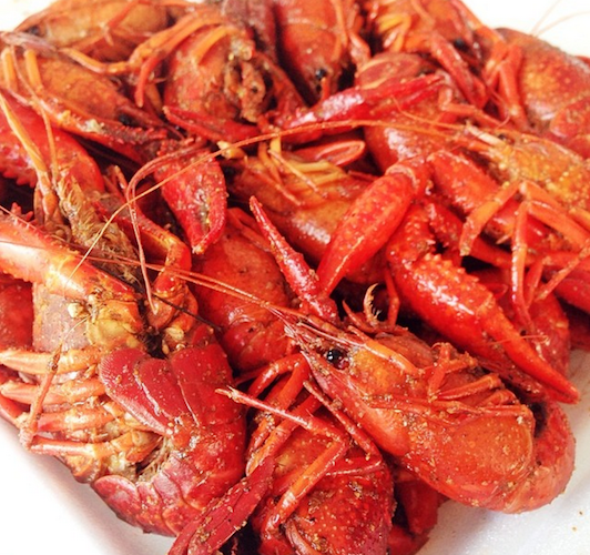 Blogger The Foodie Teacher checks out the 13th annual crawfish boil at Miami's oldest bar, Tobacco Road. Photo: @thefoodieteacher
