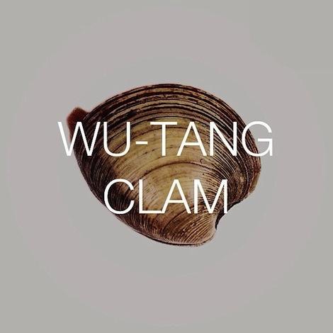 Wu-Tang-Clam 2