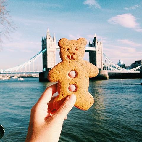 bearcookie