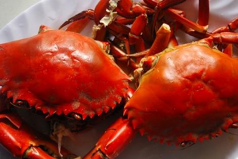 serpico_crabs