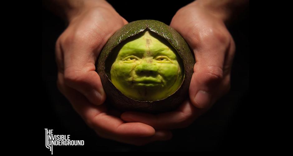Avocadess