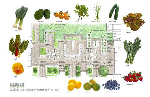 Theres Now An Edible Garden At ATT Park Home Of The San