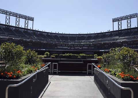 Giants Garden