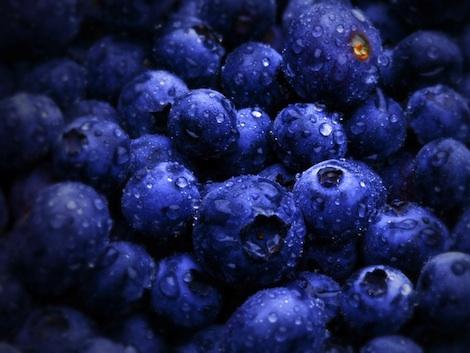 blueberry-1920x1440