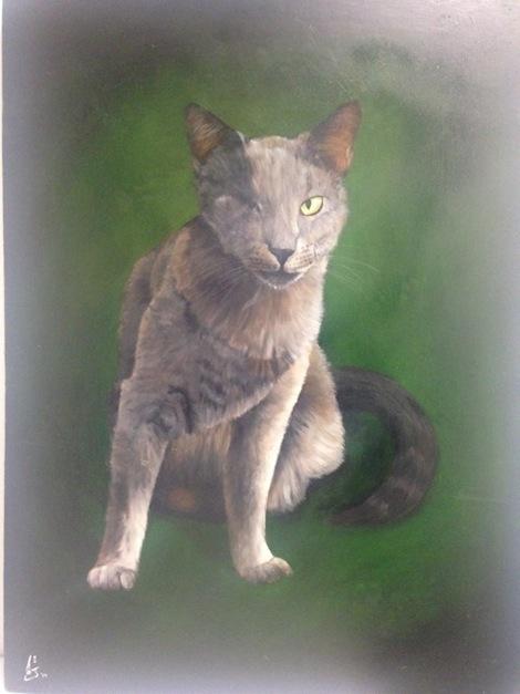 stupak_cats1