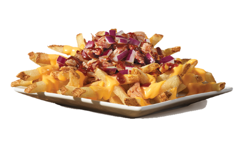 wendy's pulled pork fries