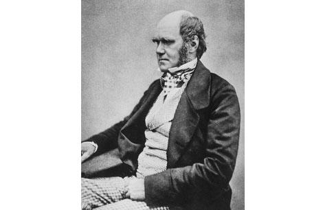 Charles-Darwin-Wiki