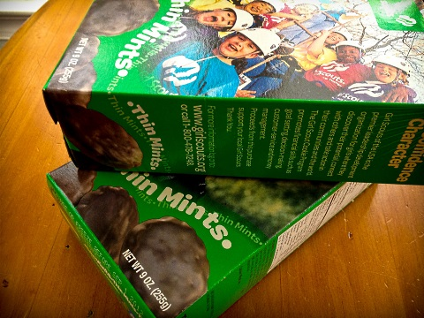 gsc pairings thin mints