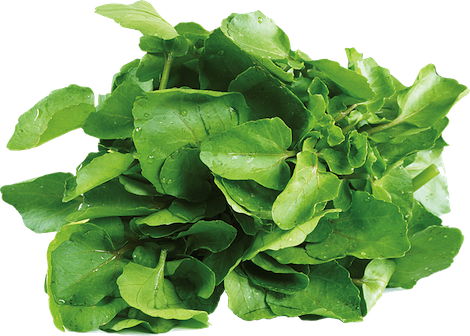 love_watercress