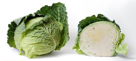 ed_cabbage