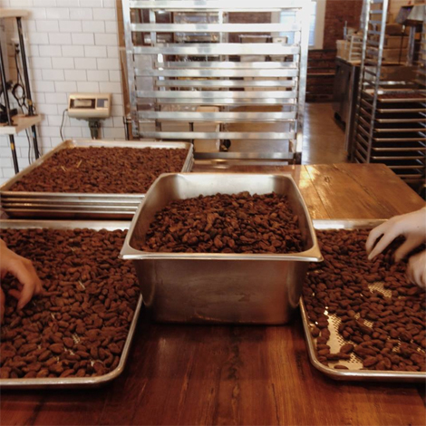 Sorting cacao beans at the factory.
