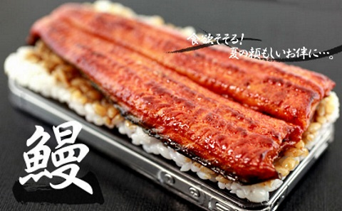 sushi iphone case unagi