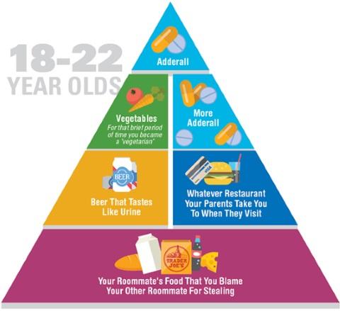 food pyramid 1