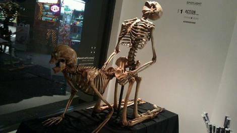 museumofsex