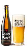 beerstyles_SaisonDupont