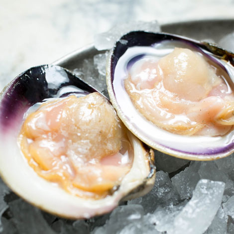 swan-oyster-depot-square-9