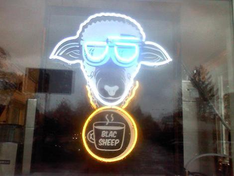 blac-sheep